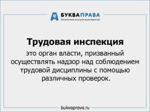 Trudovaya inspekciya chto ehto