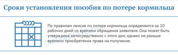sroki-ustanovleniya-posobiya-po-potere-kormilca